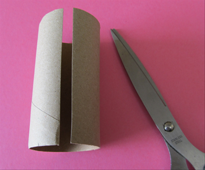 Cut 4 toilet paper rolls open along the length