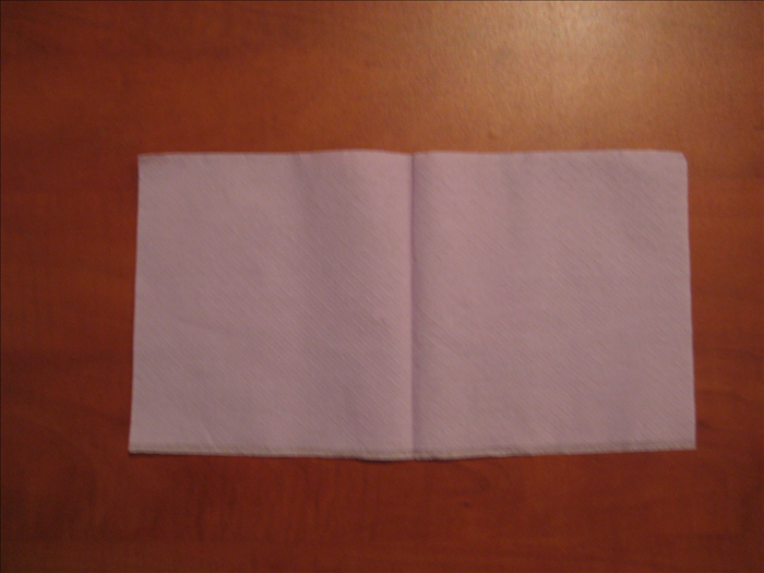 Fold the napkin in half.  The open end should be at the bottom.