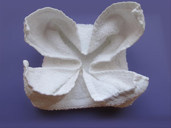 fold flowers