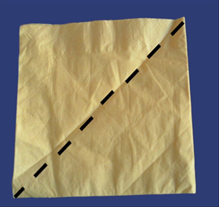 Use a paper napkin as it comes folded from the package or fold a cloth napkin in half horizontally and again vertically