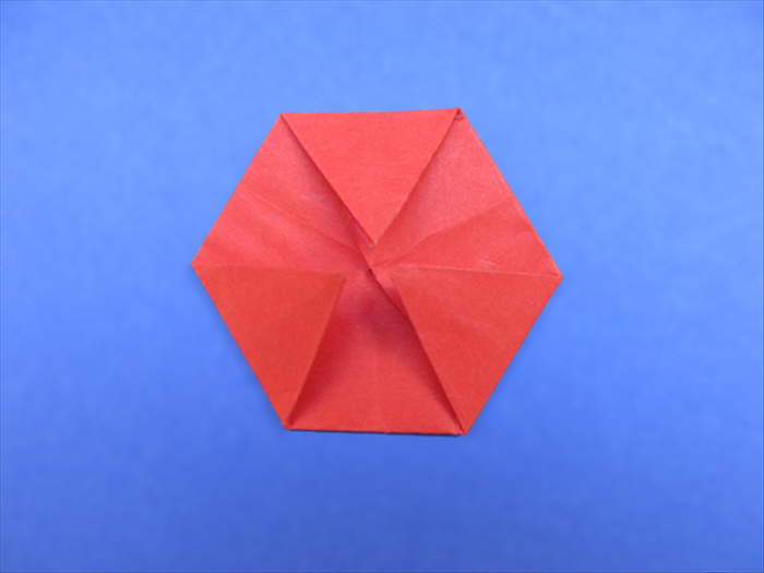 Hexagon Shaped Objects Around The House