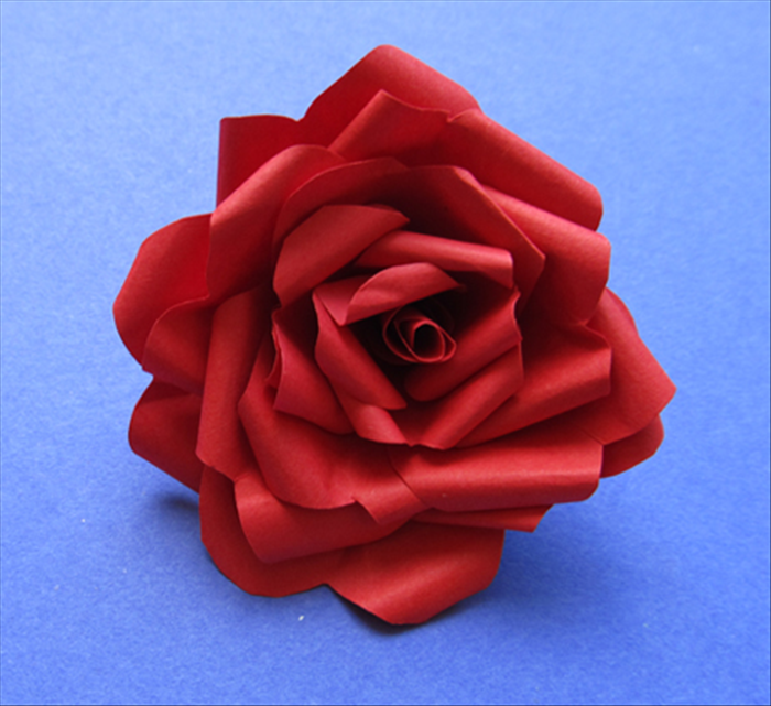 Put glue on the cut edge and place it in the center of the rose.