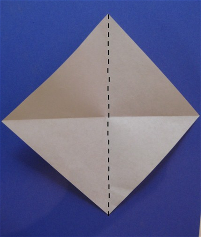 Fold in half vertically. Unfold.