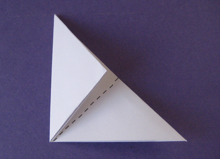 Fold the left side up to crease in half.