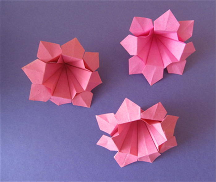 How to make an origami eight petal bell flower mightylinksfo