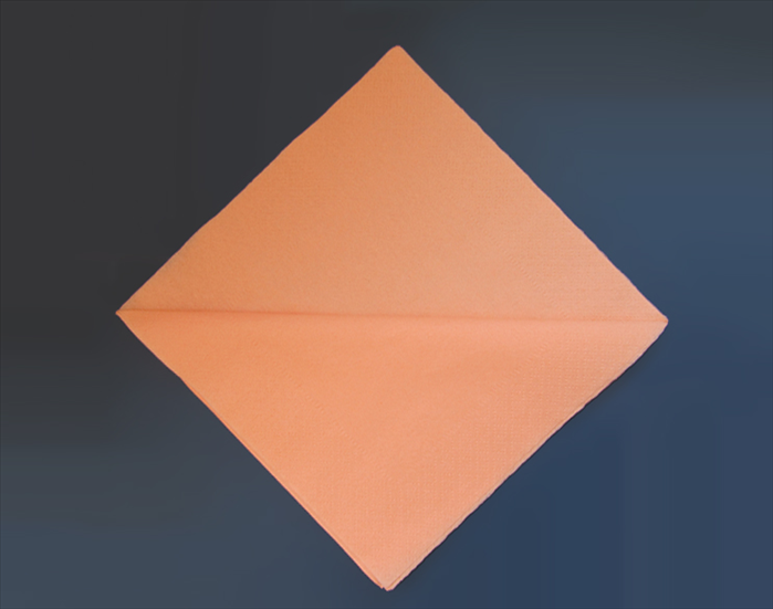 <p> Rotate the napkin so that the fold is horizontal.</p>